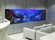 изготовление морских  и пресноводных аквариумов с заселением